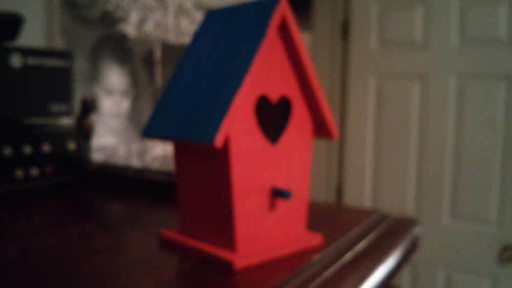 Where is Summer?  The Birds Are Angry:  Decoupage Kids Craft Bird House (4/5)